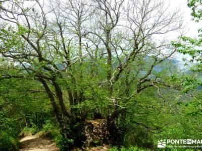 Ruta del Cares - Garganta Divina - Parque Nacional de los Picos de Europa;trekking y aventura